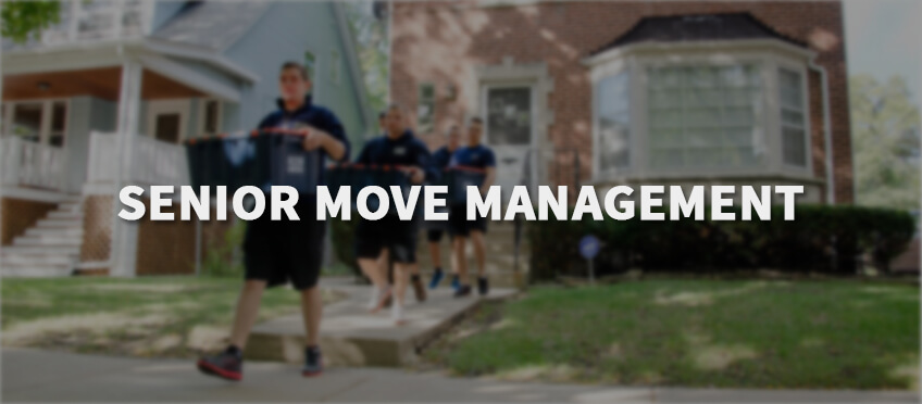 senior_move_management_header
